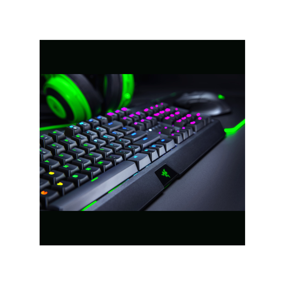 A large main feature product image of Razer BlackWidow Chroma Mechanical Gaming Keyboard (Green Switch)