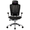 A product image of Cooler Master Ergo L Ergonomic Chair