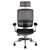 A product image of Thermaltake E500 CyberChair Ergonomic Gaming Chair White Edition